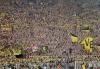 x_BVB_-_Hertha_BSC__030.jpg