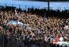 TSG_1899_Hoffenheim_-_Hertha_BSC__016