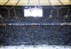 Hertha_Frankfurt_00_28429~0